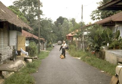 chong pang village 1985l_sm