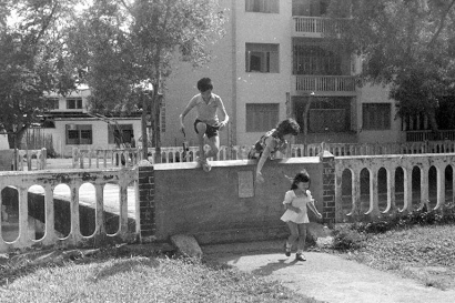 disused bridge at alexandra canal 02111974b